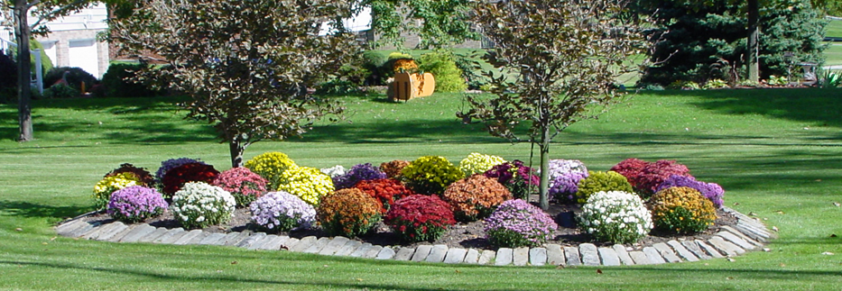 Landscapes and more quality and experience you can trust for Landscape design pictures